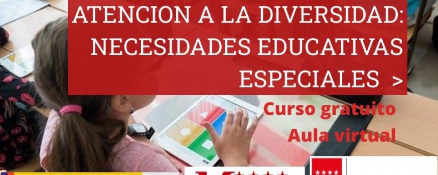 Curso de Atención a la diversidad: necesidades educativas especiales