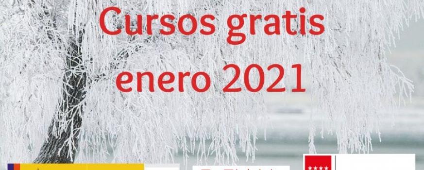 Cursos Enero 2021