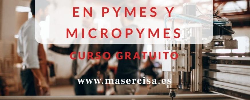 Curso de gestión de la PRL en Pymes y Micropymes
