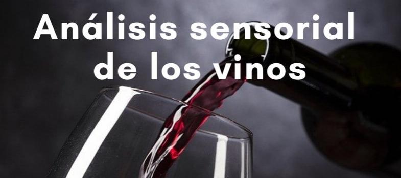 Curso de análisis sensorial de los vinos